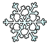 snowflake_snowflake_sm